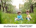 catholic easter tradition egg... | Shutterstock . vector #556472287