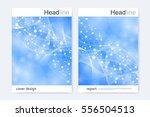 scientific brochure design... | Shutterstock .eps vector #556504513