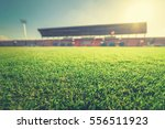 green grass in soccer stadium. | Shutterstock . vector #556511923