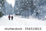 winter in mountains | Shutterstock . vector #556513813