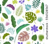 tropical leaves floral... | Shutterstock .eps vector #556528567