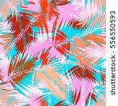 palm leaves seamless vector... | Shutterstock .eps vector #556550593