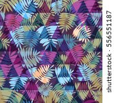 palm seamless pattern vector... | Shutterstock .eps vector #556551187