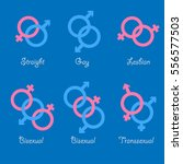 sexual orientation vector icons.... | Shutterstock .eps vector #556577503