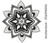 vector floral design  flower... | Shutterstock .eps vector #556596043