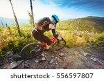 young woman mountain biker... | Shutterstock . vector #556597807