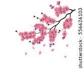 japanese sakura. lush the...