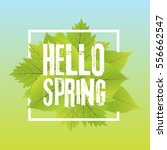 hello spring. lettering with... | Shutterstock .eps vector #556662547