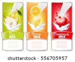 set of three labels of fruit in ... | Shutterstock .eps vector #556705957