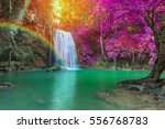 waterfall in deep forest at... | Shutterstock . vector #556768783