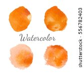 orange watercolor stains with... | Shutterstock .eps vector #556782403