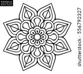 flower mandalas. vintage... | Shutterstock .eps vector #556792327