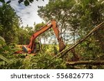 deforestation of rainforest.... | Shutterstock . vector #556826773