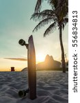 skateboard and palm tree on... | Shutterstock . vector #556834813