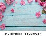 Apple Flowers On Wooden...