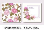 set of seamless patterns with... | Shutterstock .eps vector #556927057
