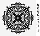 floral ornament. circular... | Shutterstock . vector #556935847