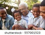multi generation male family... | Shutterstock . vector #557001523