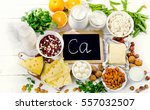 group of products rich in... | Shutterstock . vector #557032507