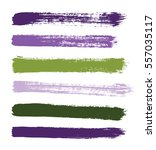 color vector strokes of paint... | Shutterstock .eps vector #557035117