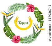 frame with tropical leaves and... | Shutterstock .eps vector #557036743