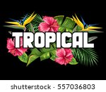 print with tropical leaves and... | Shutterstock .eps vector #557036803