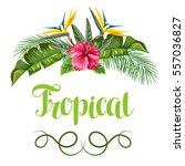 invitation card with tropical... | Shutterstock .eps vector #557036827