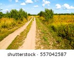 rural road on nature landscape | Shutterstock . vector #557042587