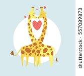 cute giraffes in love. happy...   Shutterstock .eps vector #557089873