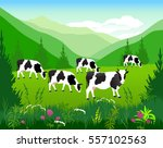 vector illustration. white cow... | Shutterstock .eps vector #557102563
