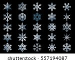 snowflake vector icon... | Shutterstock .eps vector #557194087