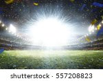 empty night grand soccer arena... | Shutterstock . vector #557208823