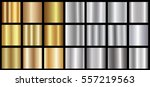 gold silver gradient background ... | Shutterstock .eps vector #557219563