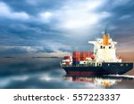 Container Ship In Ocean On...