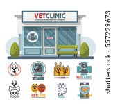veterinary medicine hospital ... | Shutterstock .eps vector #557229673