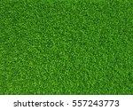 green grass. natural background ... | Shutterstock . vector #557243773
