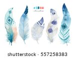hand drawn watercolor paintings ... | Shutterstock . vector #557258383