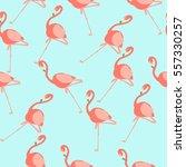 flamingo pattern   Shutterstock .eps vector #557330257