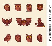 vector owl illustration. set of ... | Shutterstock .eps vector #557468407