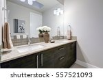 gray and clean bathroom design... | Shutterstock . vector #557521093