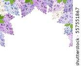 vector background with purple ... | Shutterstock .eps vector #557551867