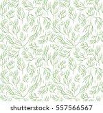 Herbs Seamless Pattern. Dill...