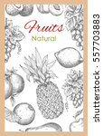 fruits poster of vector sketch... | Shutterstock .eps vector #557703883