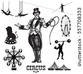 circus and amusement park... | Shutterstock .eps vector #557708353