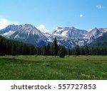 An Alpine Meadow Near Stanley ...