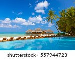 pool and cafe on maldives beach ... | Shutterstock . vector #557944723