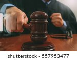 justice and law concept.male... | Shutterstock . vector #557953477