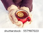 woman's hand holding cup of tea ... | Shutterstock . vector #557987023