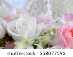 Stock photo white rose image of love image of valentines day image of wedding day 558077593
