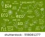 set  of  organic  fit  natural  ...   Shutterstock .eps vector #558081277
